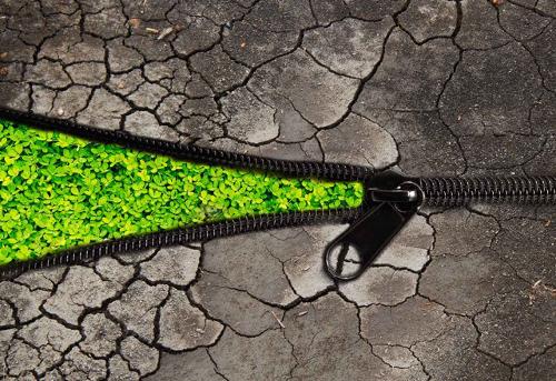 Környezetvédelmi civil kezdeményezés - Zöldgömb fesztivál!